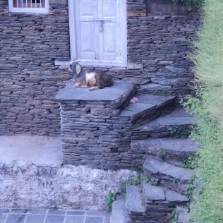 HP6_Dry stack masonry for walls