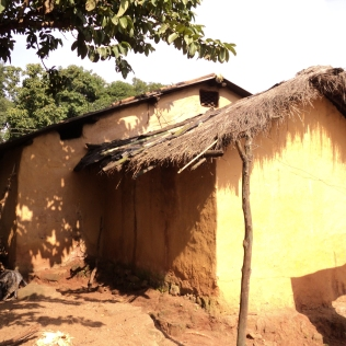 Od4_Traditional rice paddy thatch for pitched roofs